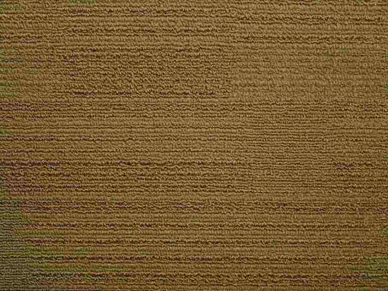 Modulyss Color& Carpet Tiles - Clearance - 823 Dark Sand - 50cm x 50cm